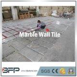 Tuile de marbre populaire de Bianco Carrare pour le mur de fond d'hôtel