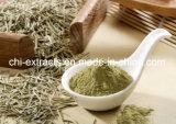 식품 첨가제를 위한 로즈메리 잎 추출