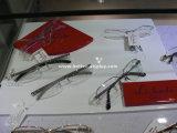 아크릴 안경알 나무 전시 Btr E1051