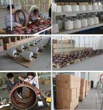 Generatore a magnete permanente basso di CA RPM di vendita diretta 2kw della fabbrica (SHJ-NEG2000)