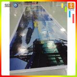 Drapeau de maille de PVC de frontière de sécurité d'étalage de salon