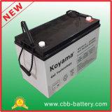Ventil 12V100ah regelte Gel-Batterie