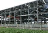 Colorear el almacén de acero de la fábrica de la estructura de acero de la luz del panel de emparedado