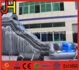 Outdoor Playground Inflatable Water Bouncer Slide para venda