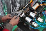 Cordon de connexion de PVC du chat 5e de ftp