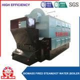 Chaudière à chaînes de petite capacité horizontale de biomasse de grille