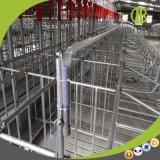 Best Price를 가진 도매 Durable Pig Stall Gestation Crates