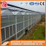 Kommerzielles rostfreier Stahl-Aluminiumprofil PC Blatt-Gewächshaus für Blume