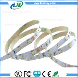 Luz flexível da decoração da luz da angra da luz de tira do diodo emissor de luz de 3528SMD 24VDC
