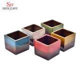 Containers van de Planters van de Potten van de Bloem van de Potten van de Installatie van de Cactus van Sucuulent van de Reeksen van de eenvoud de Periodieke