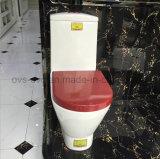 Foshan Sanitária lavabo com duplo mecanismo de Cisterna embutida