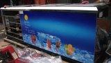 Máquina del polo de hielo con el CE del palillo aprobado