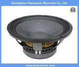 12X251 -12 بوصة الاتفاق 250RMS المهنية مكبر الصوت مكبر الصوت