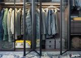 حديثة زجاجيّة خزانة ثوب غرفة نوم أثاث لازم مقصورة