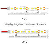 UL SMD5050 60 LEDs/M, tira de IP67 LED
