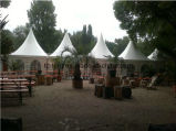 Clear Gazebo Garden Outdoor Camping Tent