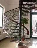 Haohan modificó la barandilla de acero galvanizada australiana europea elegante 6 de la escalera para requisitos particulares