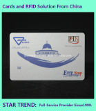 Cartão da galeria feito do PVC com listra de Magneic (ISO 7811)