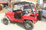Mini Rode Jeep voor de Sporten van Volwassenen met Ce