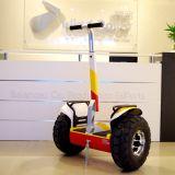 Langer Mileague elektrischer Mobilitäts-Roller für Erwachsenen mit anerkanntem Cer FCC RoHS