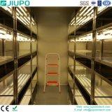 Incubatrice di sviluppo di pianta con il sistema di illuminazione dei tubi fluorescenti