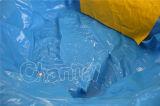 Dia van het Water van de Binnenplaats van de dolfijn de Opblaasbare voor Kinderen