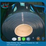 puerta de tira conveniente de color verde oscuro flexible de la pantalla de la soldadura del PVC de la seguridad de la anchura de 300m m