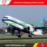 Airfreight logistique de la Chine à la ville de Mexico courier livraison express
