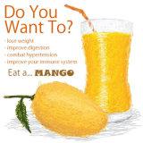 Jugo de mango Polvo para Bebidas y Alimentos Sabor
