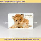 Zoo-Park-Plastikkarte mit Barcode für Aquarium