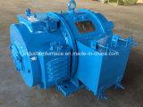 Motor eléctrico de la C.C. del barco de mucha demanda 12V