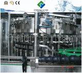 Terminar la línea carbónica máquina de rellenar del refresco
