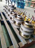 Élévateur à chaînes pratique de matériel de levage 2 tonnes à vendre