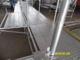 Sistema de Andamios Layher de alta calidad con certificación SGS