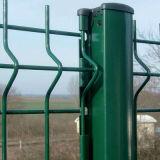 PVC에 의하여 입히는 구부려진 3D 강철 위원회