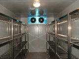 Große Schuppen-Kühlraum-Projekt-Kühlraum für Frucht-Kühler (LAIAO)