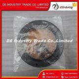 ISM Qsm M11 Engine Crankshaft Kit de vedação de óleo traseiro 3800968