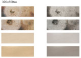 300[إكس][800مّ] داخليّ ريفيّ [بويلدينغ متريل] خزفيّ جدار قرميد لأنّ زخرفة بينيّة