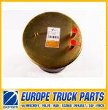 4912np08 de Delen van de Vrachtwagen van de Lente van de lucht voor Renault