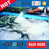 容易な輸送水冷却のシーフードの市場のスラリーの氷システム