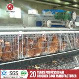 H tapent le matériel de volaille de cages de poulet de couche d'oeufs
