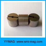 Magneet AlNiCo van de Magneet van de hoge Precisie de Super Sterke Gesinterde Schijf