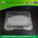 Устранимый ясный контейнер упаковки еды