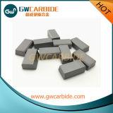 Pontas soldadas do carboneto de tungstênio no estoque