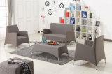Neues Entwurfs-Aluminiumsofa-Gewebe-Sofa-modernes Sofa (TG-6103)