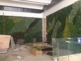 2017 Nouveau motif Arbre artificiel décoratif mur d'art vert