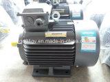 Доверие 220V/230V/240V/400V/415V 3 электрического двигателя участка