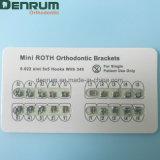 Corchetes ortodónticos de Roth de los materiales dentales de Denrum con nuevo color