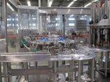 5000b/H volledig Automatisch Vruchtesap Monoblock in de Flessen van het Glas