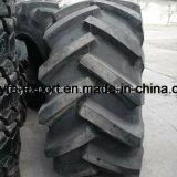 Pneu pour le marché des États-Unis 23.1-26, pneu de la forêt 28L-26, pneu de chargeur du logarithme naturel Ls-2, marque anticipée de Tianli